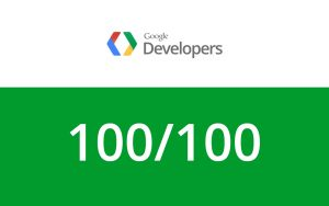google_page_speed_wordpress